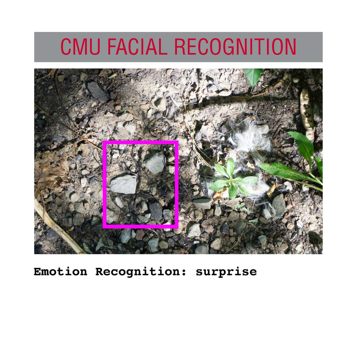 facial recognition Page 13