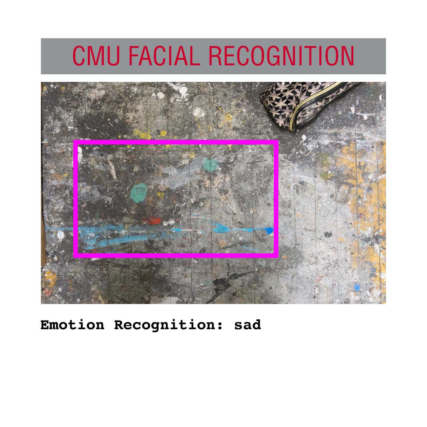 facial recognition Page 01