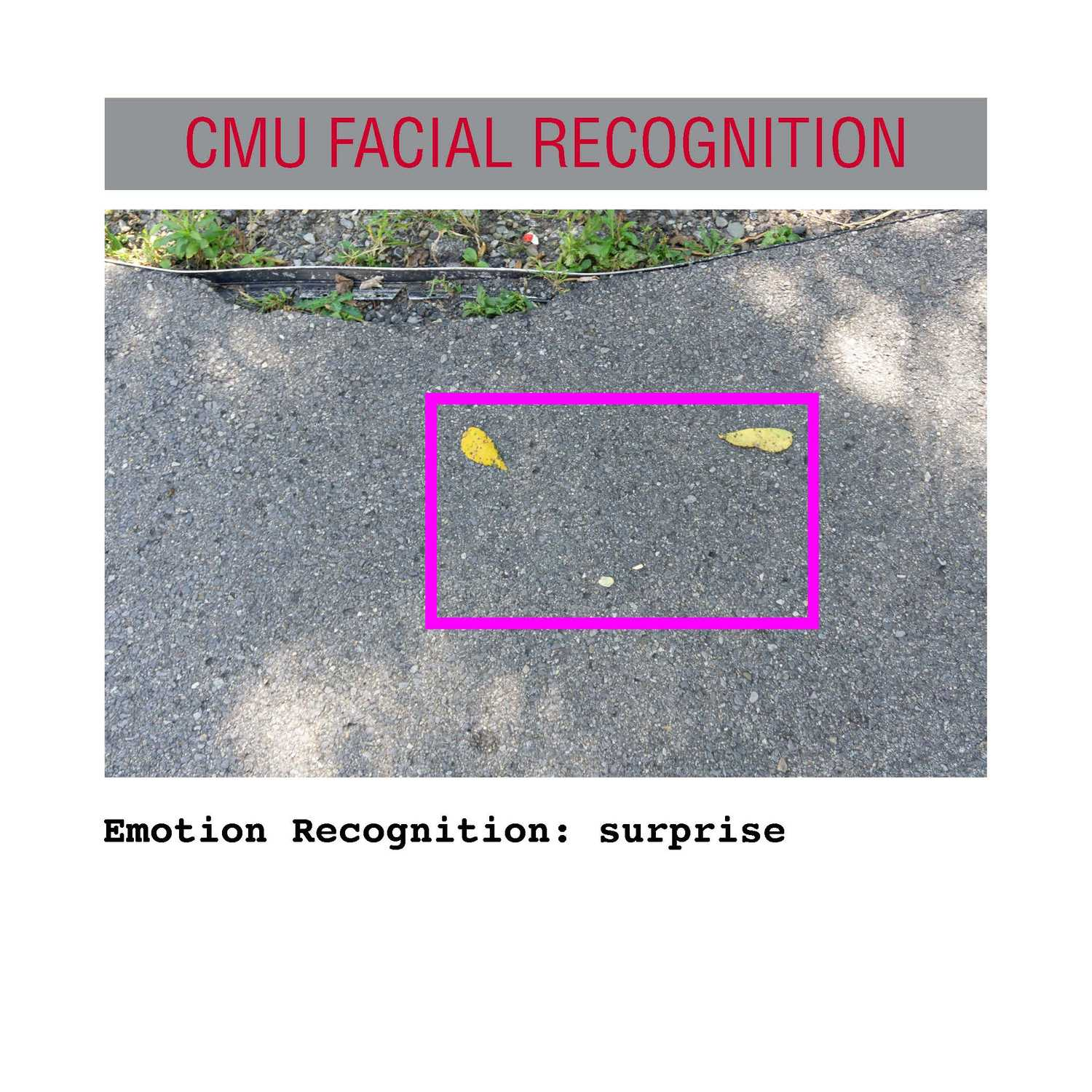 facial recognition Page 17