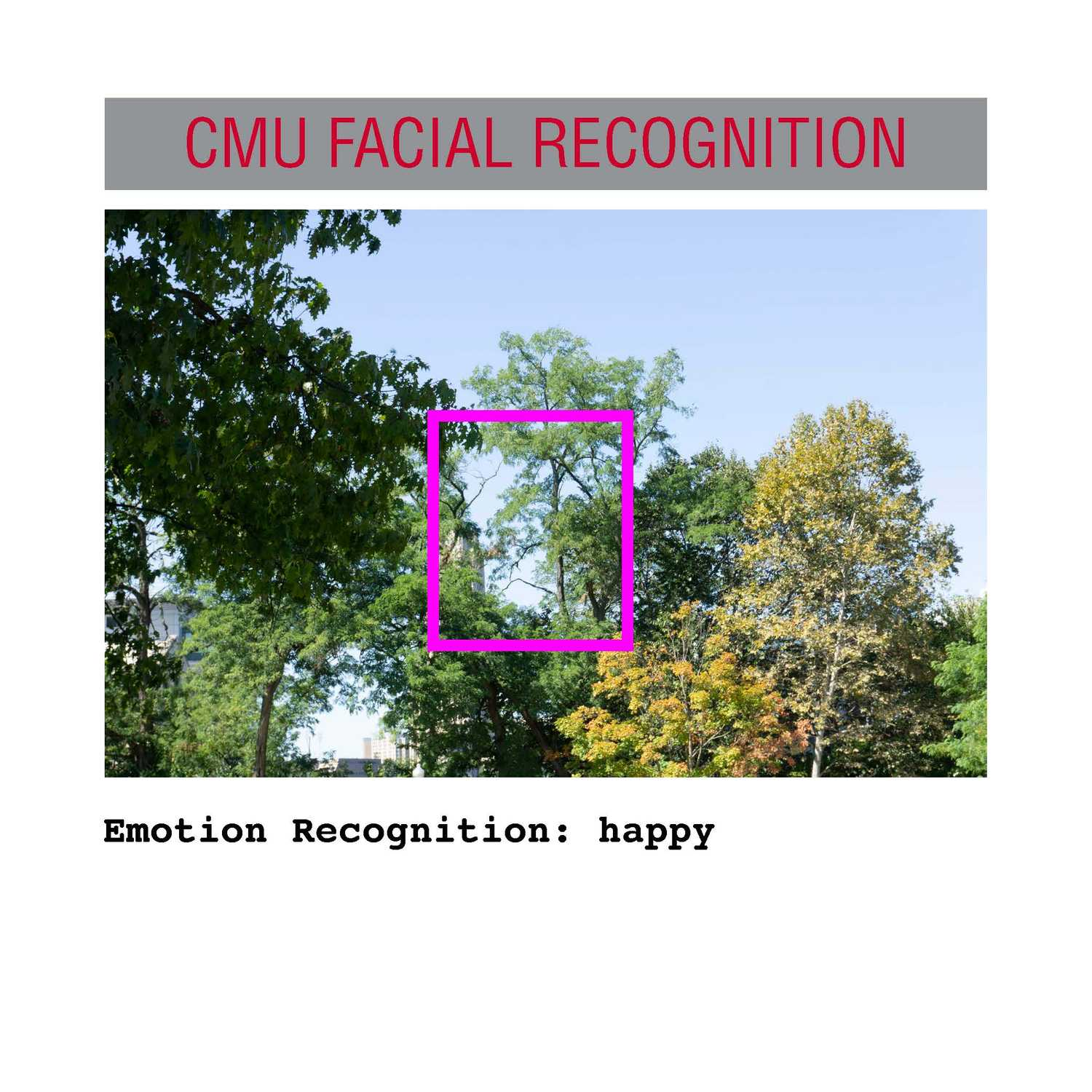 facial recognition Page 31