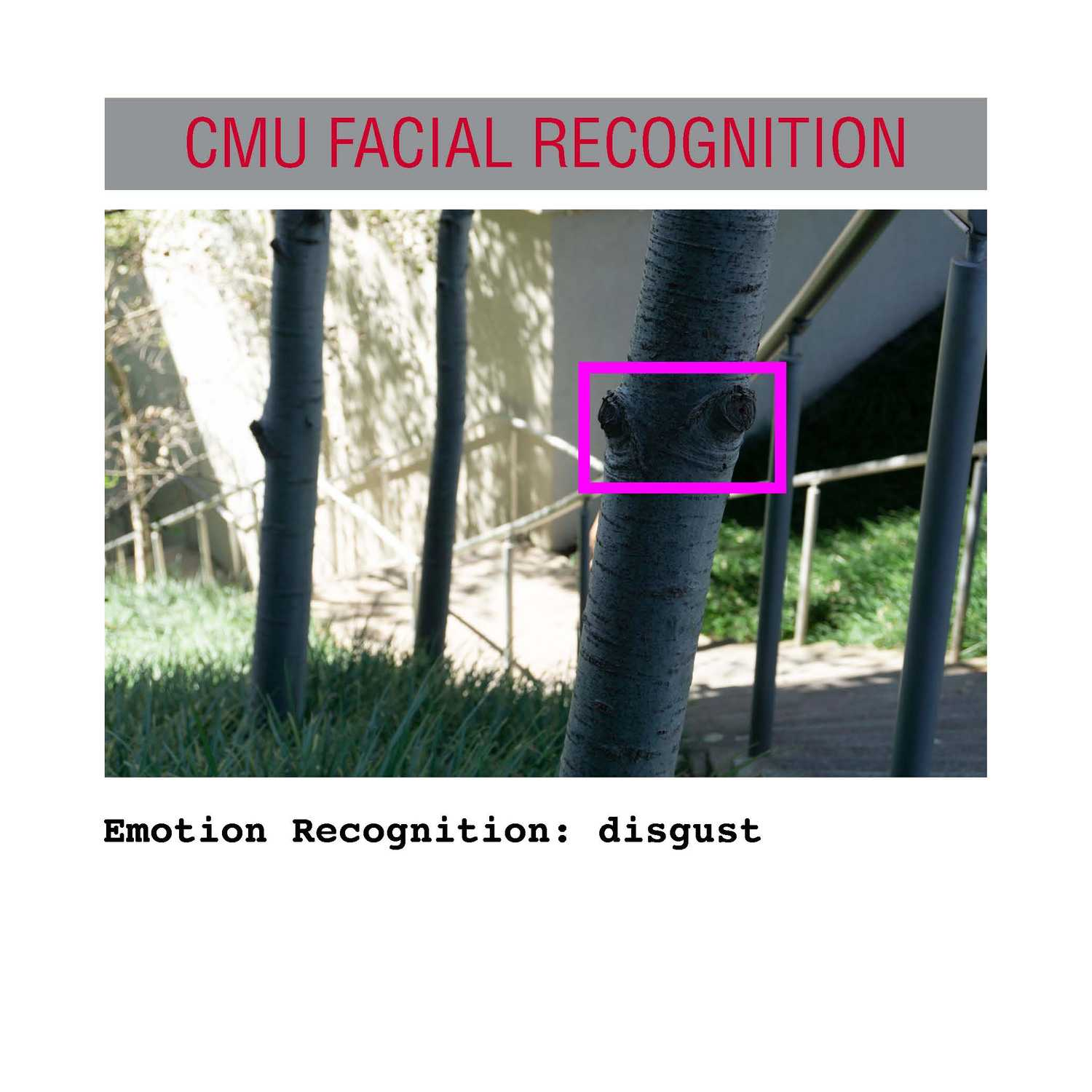 facial recognition Page 02
