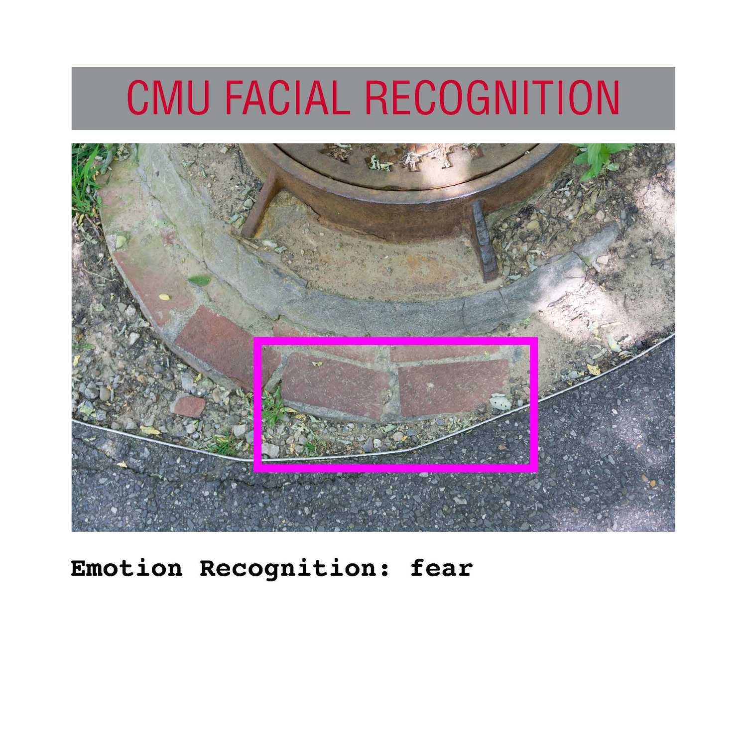 facial recognition Page 12