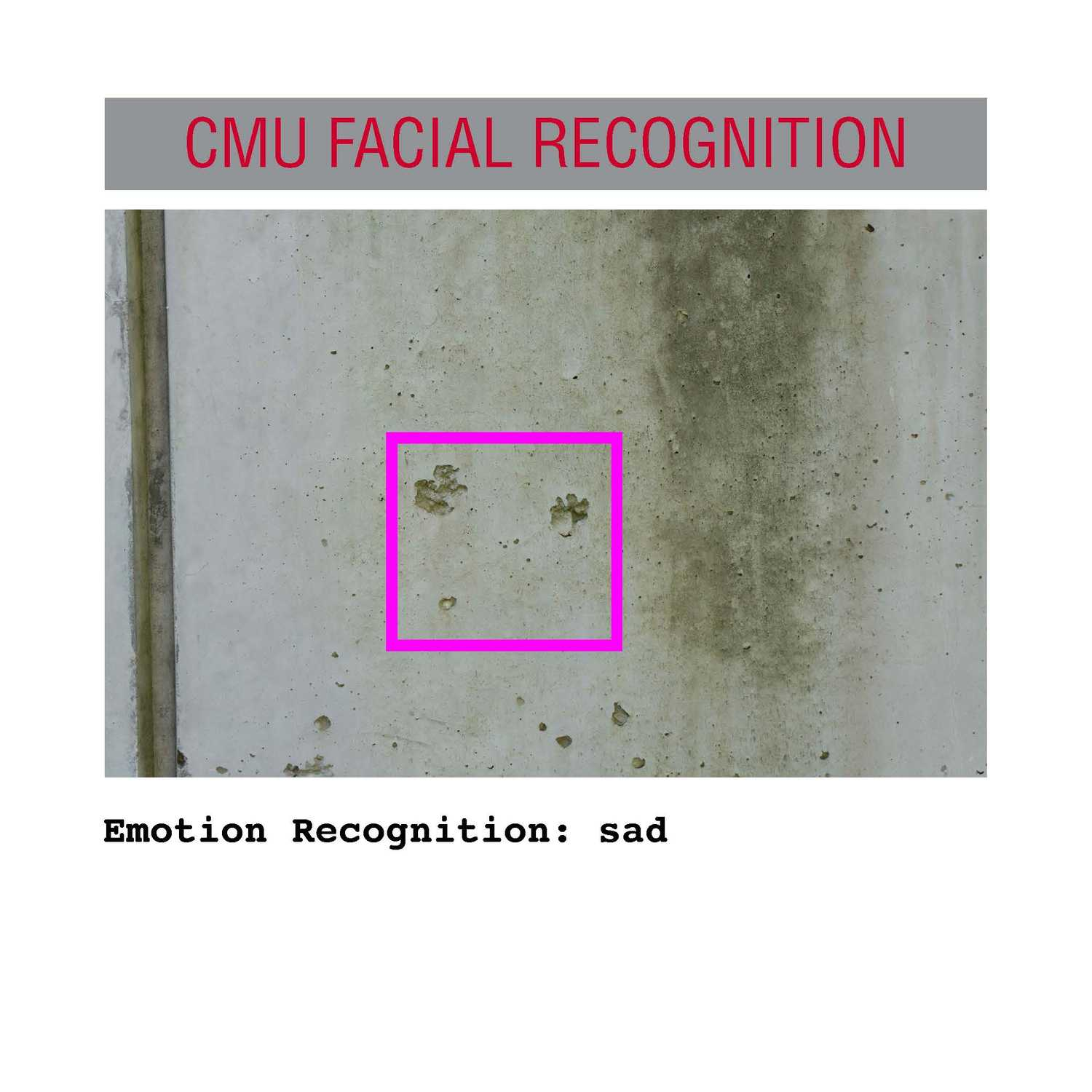 facial recognition Page 20