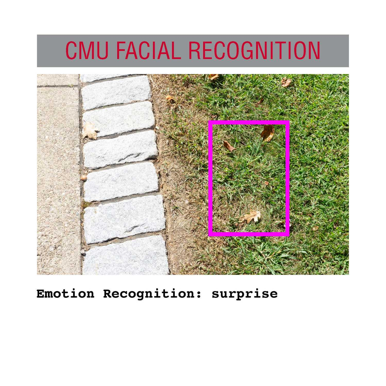 facial recognition Page 32