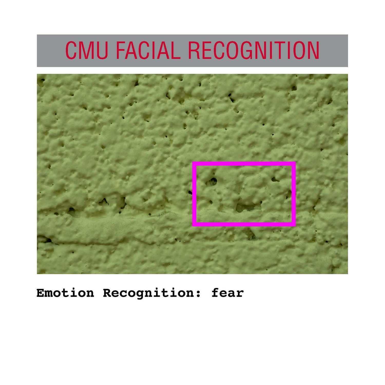 facial recognition Page 30