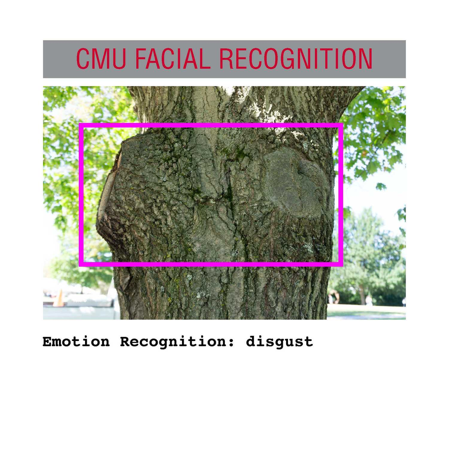facial recognition Page 33